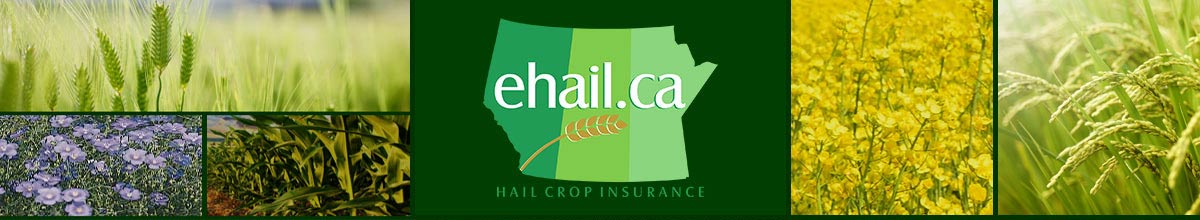 Ehail.ca - Hail Crop Insurance